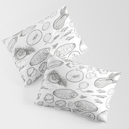 Exploration of the Seed Vault Pillow Sham