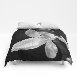 forsythia black and white Comforters