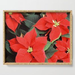 Beautiful Red Poinsettia Christmas Flowers Serving Tray