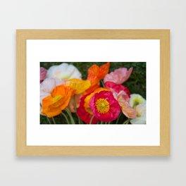 Happy Bunch Framed Art Print