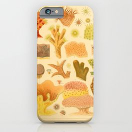Antique Naturalist Coral iPhone Case