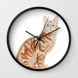 Happy Tabby Cat Wall Clock