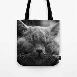 Cat, Cats - Love Cats Tote Bag