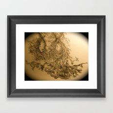 Yael-base linkage Framed Art Print
