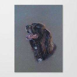 English Cocker Spaniel art print Canvas Print