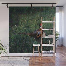 Pheasant Wall Mural