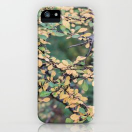 New York Nature V iPhone Case