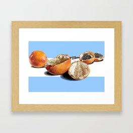 Granadillas Framed Art Print