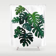 Descendants II Shower Curtain