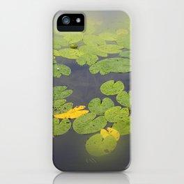 garden pond IV iPhone Case