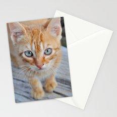 Kitty Cat Stationery Cards