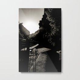 Walk on the wild side Metal Print