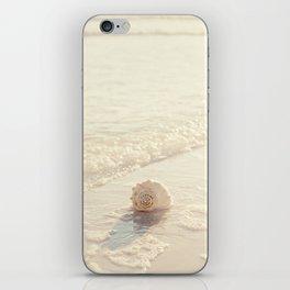 Seashell by the Seashore I iPhone Skin