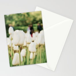 White tulips Stationery Cards