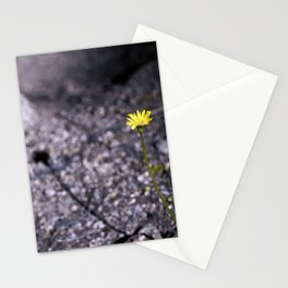 # 362 Stationery Cards