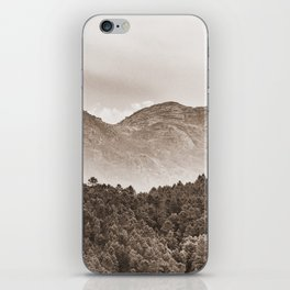 The mountain beyond the forest iPhone Skin