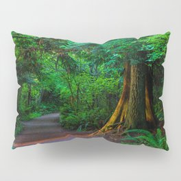 Magic Moment Pillow Sham