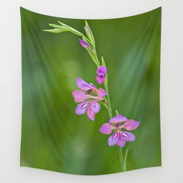 Beauty in nature, wildflower Gladiolus illyricus Wall Tapestry