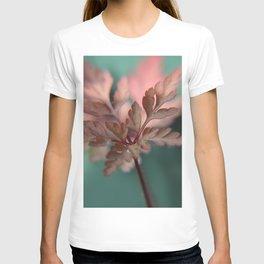 Autumn Leaf T-shirt