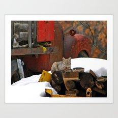 Bobcat Drive Art Print