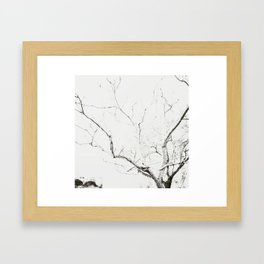 Lines #3 Framed Art Print
