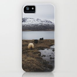 Sheep in Iceland iPhone Case