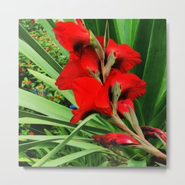 Chic Flame-Red Flower in Garden Metal Print