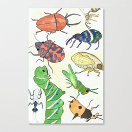 Bugs Are Cool Canvas Print