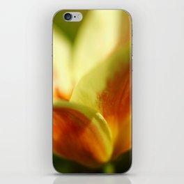 April garden Tulip 03 iPhone Skin
