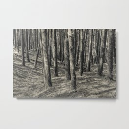 In the forest #8 Metal Print