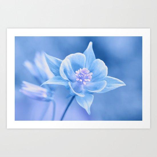 Columbine Flower 161 Art Print