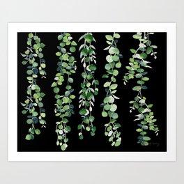 Eucalyptus Sur Fond Noir Art Print