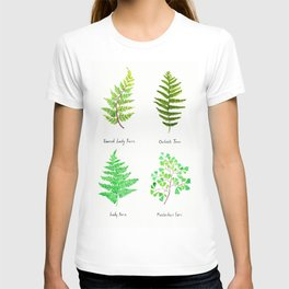 fern collection watercolor T-shirt