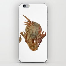 feathers and skull iPhone & iPod Skin