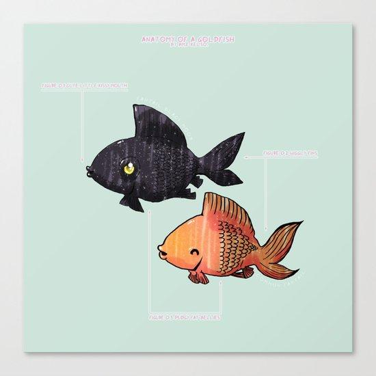 Anatomy Of A Goldfish Canvas Print