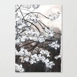 Cherry Blossom in the Rain - Ink Drawing Canvas Print