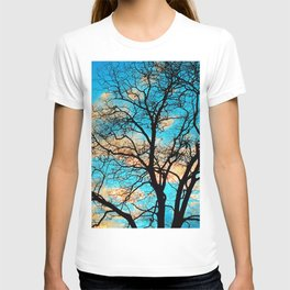 Leafless Tree In The Sunset IV T-shirt