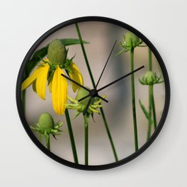 Mexican Hat Wildflowers in Horicon Marsh Wall Clock