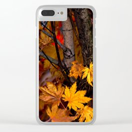 Japanese maple tree Clear iPhone Case
