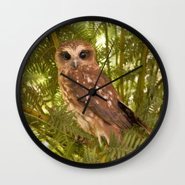 Southern Boobook Owl Wall Clock