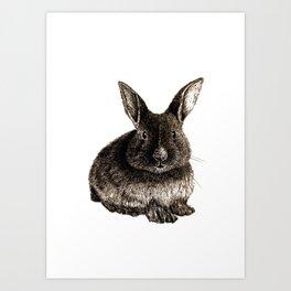 Rabbit Artwork - Hatching Drawing Art Print