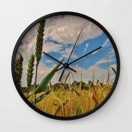 Barley (Hordeum vulgare) Wall Clock