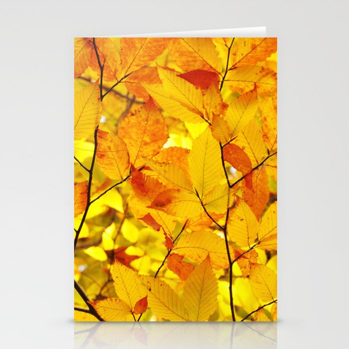 indian summer yellow autumn fall leaves stationery cards by