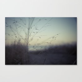 Dunes of Erie Canvas Print