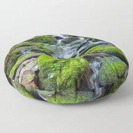 Downstream Floor Pillow