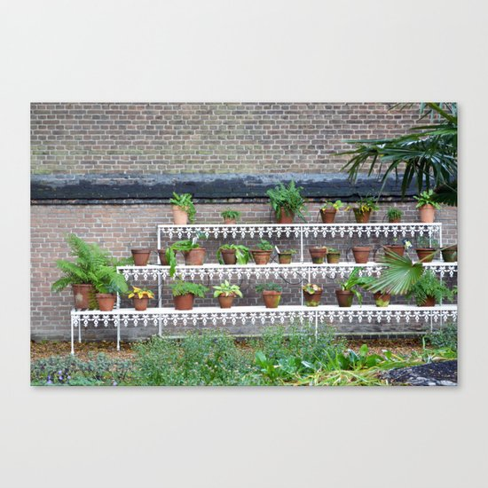 Pots and plants Canvas Print