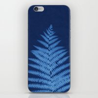 fern iPhone & iPod Skins featuring Fern by Jill Byers