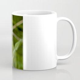 Gunnison's sego lily Coffee Mug
