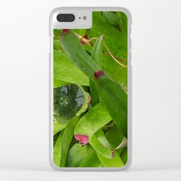Lush Pools Clear iPhone Case