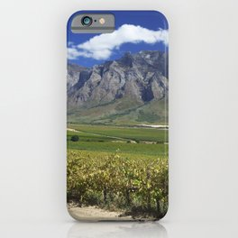 Vineyards in South-Africa iPhone Case